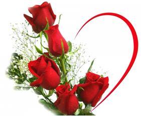 Tienda online para floristerias