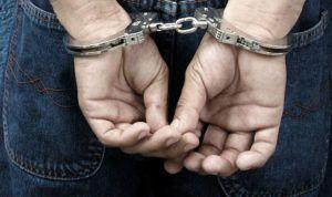 13 personas detenidas por comerciar ilegalmente con productos Fitosanitarios