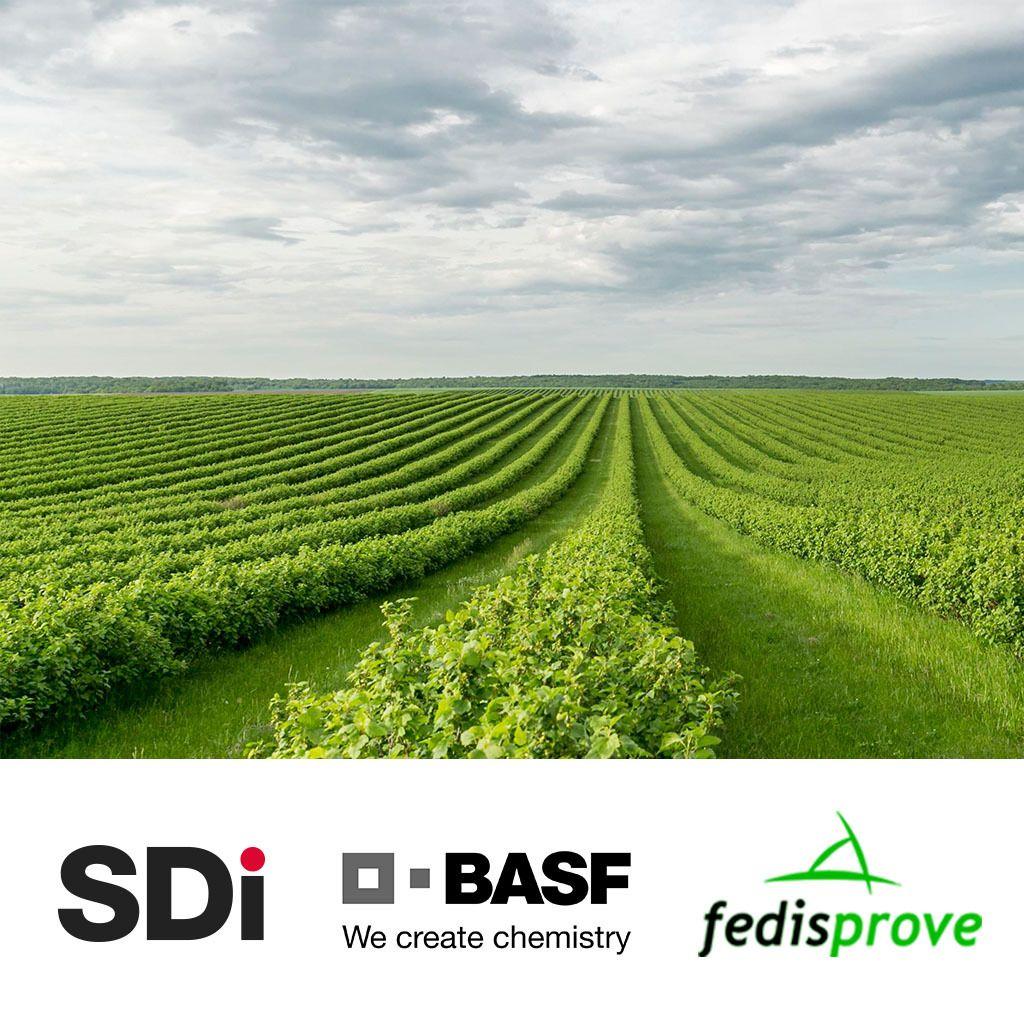 Normativa, tecnología y eficiencia en el sector de Distribución de protección vegetal