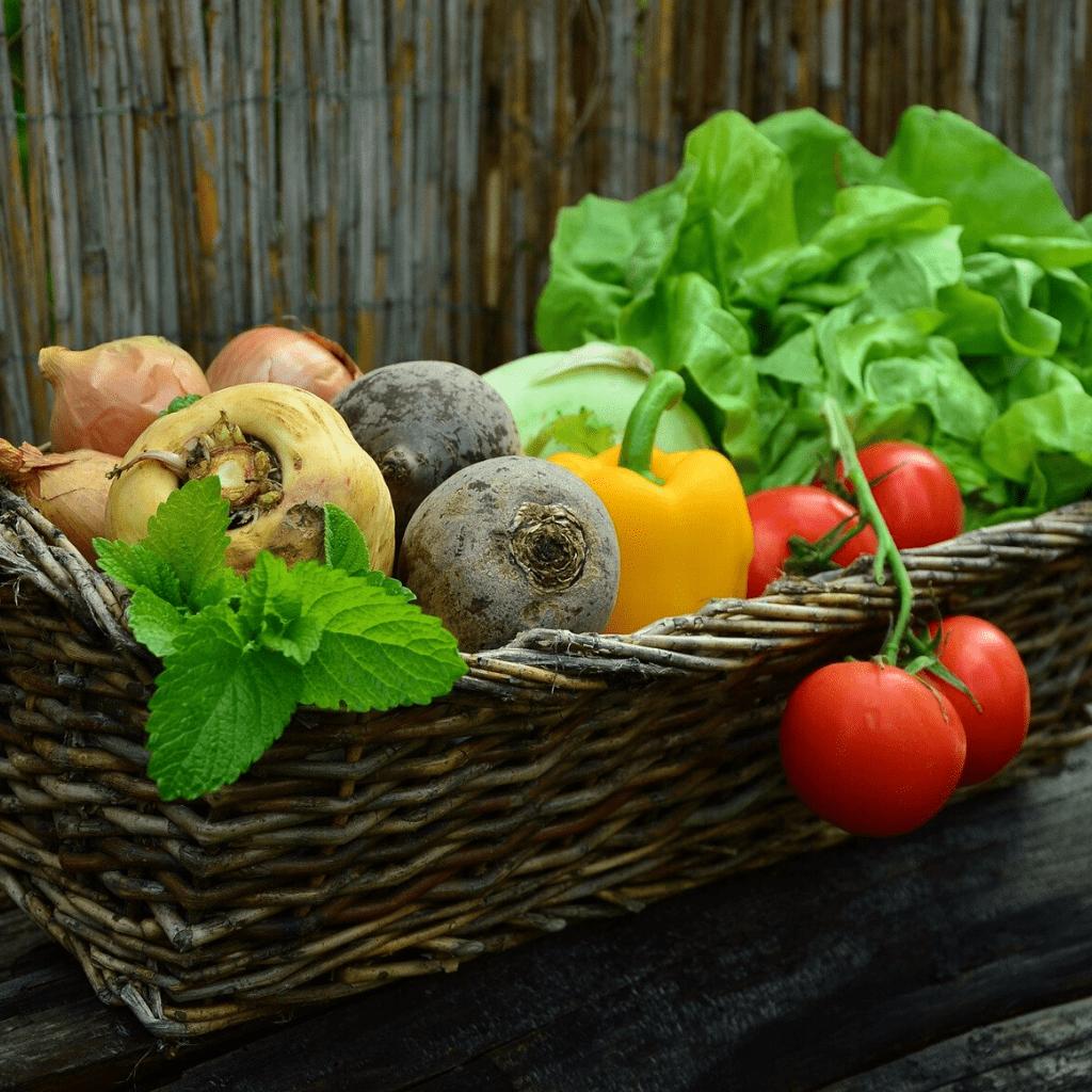 Normativa y tecnología para el sector de la protección vegetal (Octubre)
